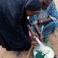Gao : femmes préparant la spiruline