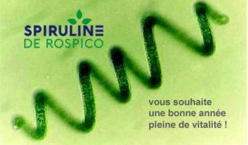 carte de voeux 2021 Spiruline de Rospico